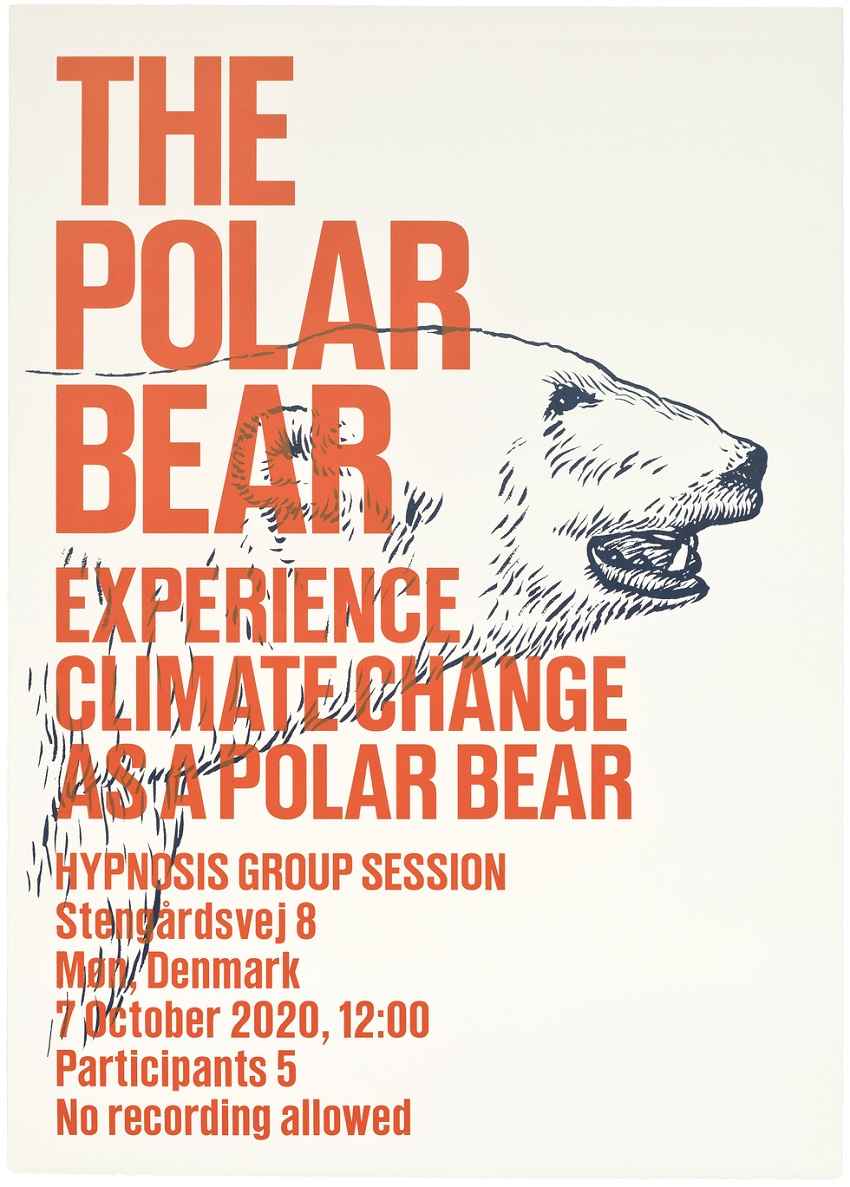 Superflex - experience_polarbear_web